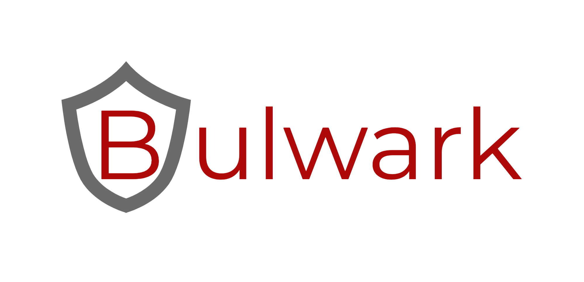 Bulwark Organizational Asset and Vulnerability Management Tool