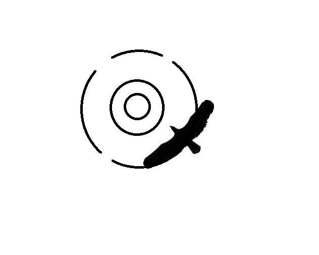 HawkScan